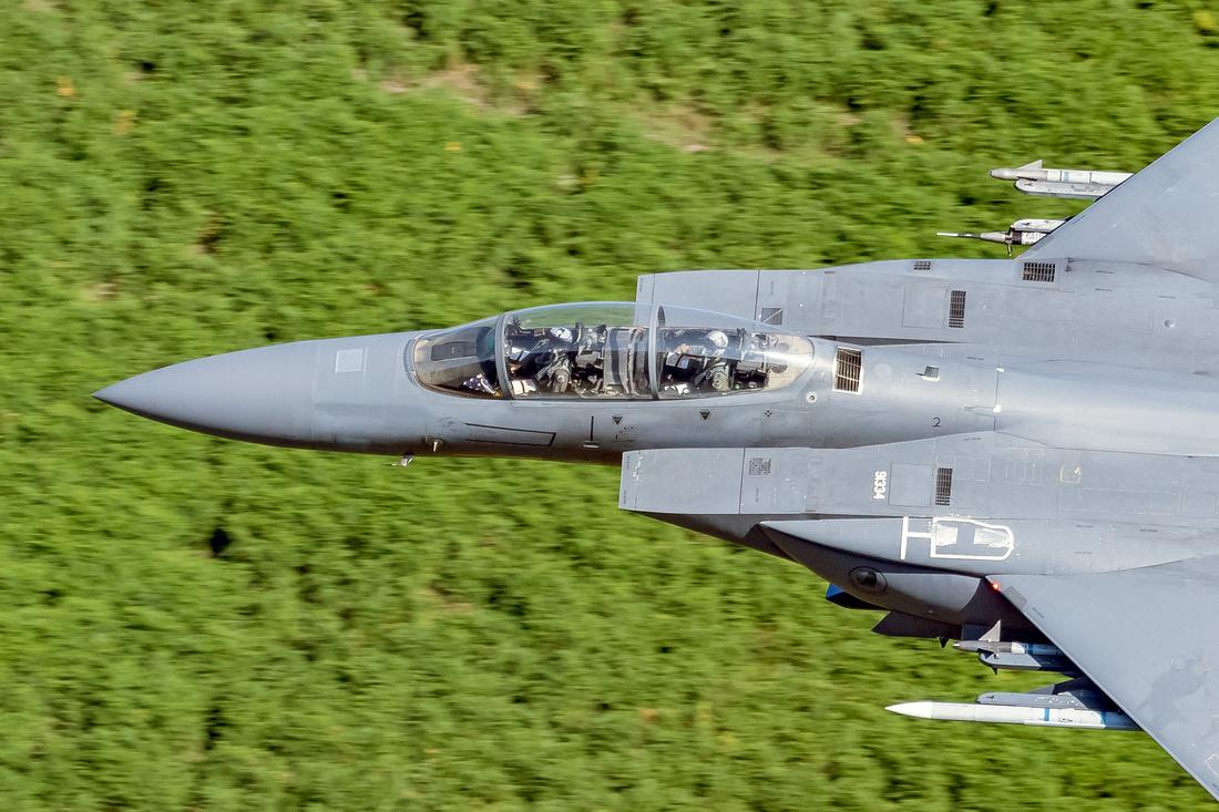 McDonnell Douglas F-15E Strike Eagle (LN 91-334) 494th FS 'Black Panthers'